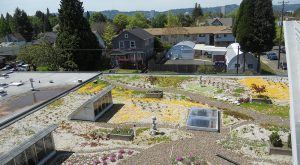 Portland, Oregon converted warehouse into rooftop garden and living space