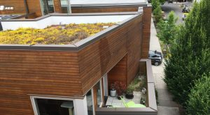 Ankeny Nest multi-family residential units in SE Portland, Oregon with paver patios and ecoroofs