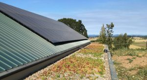Forest Grove Oregon Green Roof with Solar Panels