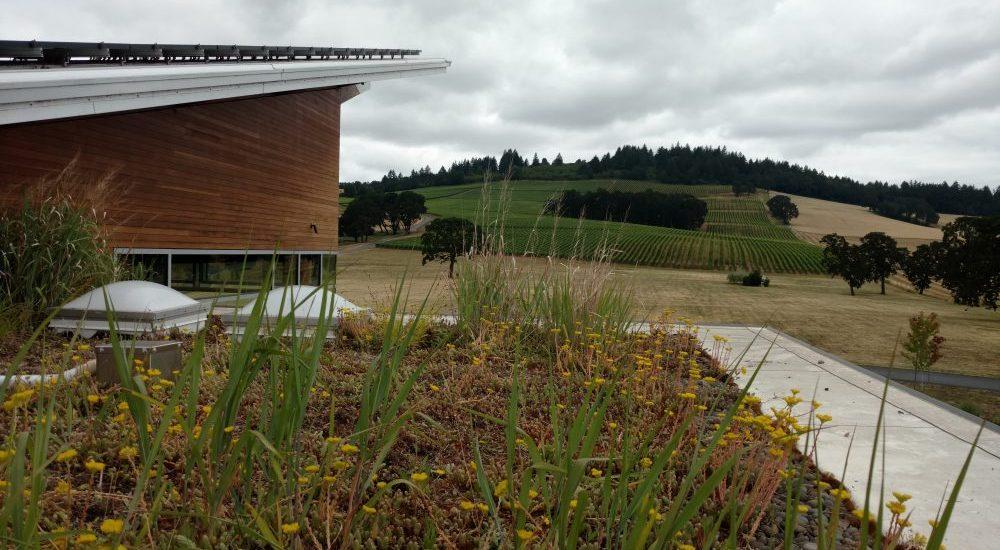 Green Roof Portland Oregon